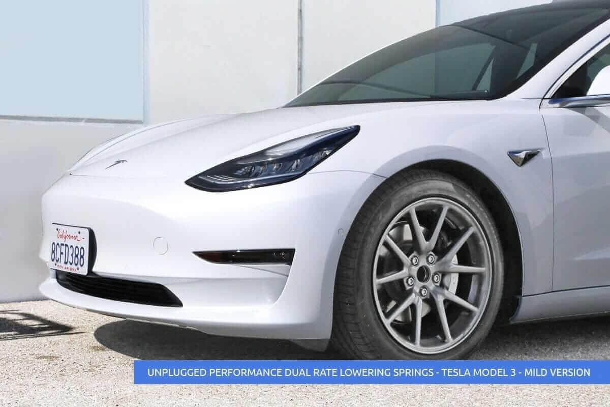 Dual Rate Linear Lowering Spring Set for Tesla Model 3